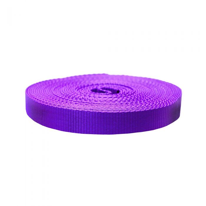 1 Inch Flat Nylon Purple