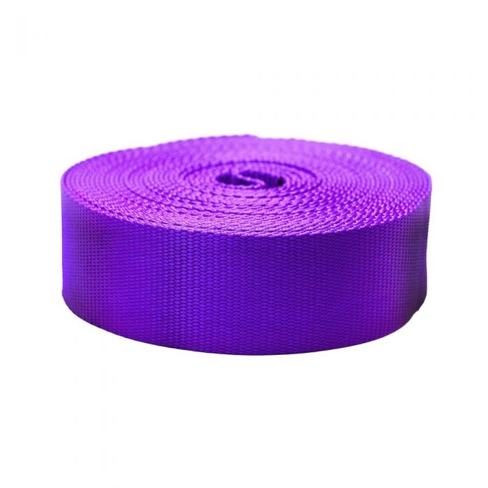 2 Inch Flat Nylon Purple