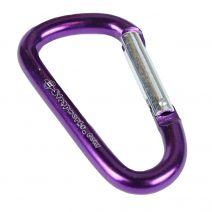 Purple Mini Carabiner