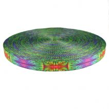 1-1/2 Inch Picture Quality Polyester Webbing Alien Skin
